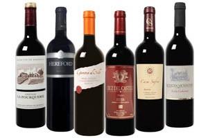 Wein Überraschungspaket Rotwein im Angebot zum Schnäppchenpreis